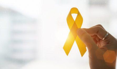 Des chercheurs conçoivent une nouvelle thérapie potentielle pour le cancer infantile courant Les chercheurs ont conçu une nouvelle méthode thérapeutique possible pour le sarcome synovial, l'un des cancers des tissus mous les plus courants chez les jeunes adultes et les adolescents. Actuellement, le taux de survie à long terme des patients atteints de sarcome synovial est bien inférieur à 50 %. C'est un fait qui met en évidence à quel point les nouvelles découvertes sont vitales si nous voulons améliorer les perspectives des personnes et de leurs familles. En utilisant la technologie de criblage du génome CRISPR de haute technologie, les chercheurs ont d'abord vérifié que BRD9 (une protéine) était importante pour l'endurance des tumeurs du sarcome synovial. Ils ont ensuite entrepris de développer de nouveaux médicaments pour cibler cette protéine. Des tests précliniques sur des souris ont établi qu'un médicament nouvellement conçu bloque la progression des tumeurs. La prochaine mesure consistera à expérimenter le nouveau médicament dans des tests cliniques sur des patients, ce qui, selon les chercheurs, se produira bientôt dans les années à venir. Le Dr Gerard Brien est l'auteur principal de l'étude, qui est publiée dans la revue internationale eLife. Dans le même ordre d'idées, des chercheurs du Memorial Sloan Kettering ont conçu de petits capteurs implantables. Ces capteurs sont constitués de nanotubes de carbone en forme d'aiguille qui peuvent être facilement placés dans les tissus. Les capteurs sont si minuscules que plusieurs d'entre eux peuvent se loger au sommet d'une épingle. Les capteurs fonctionnent en émettant et en absorbant une lumière infrarouge inoffensive qui fournit des données sur le biomarqueur de la maladie qui spécifie essentiellement l'activité biologique, par exemple, si la tumeur se développe ou non. La lumière peut être volontairement détectée et analysée même si elle traverse de nombreux centimètres de tissu. Ainsi, les capteurs à nanotubes 